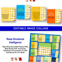 [New Quality] Emotional Intelligence and Emotional Wellness - 270+ Piece PLR Pack by JR Lang Review – The Massive Collection of Various High Quality Contents Concerning Emotional Intelligence and Wellness, Complete with Private Label Rights that You Can Edit, Rebrand and Sold as Your Own Products