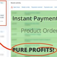 DropGecko by RTB Solution Review-Introducing The System Where You Are The Highly Paid Owner of A Thriving, Successful, Automated eCom Business Within Minutes From Right Now!