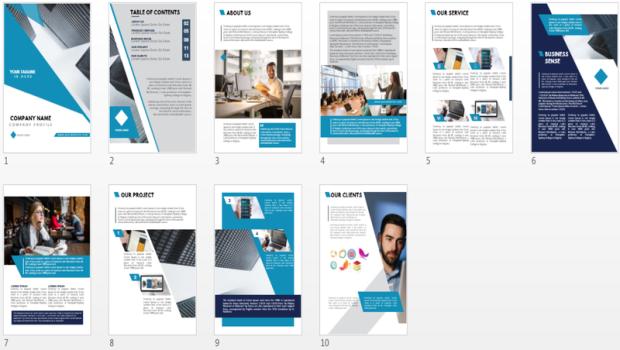 PLR Offline Business Design Templates by Ivana The